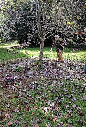 Joanna Cardew sons grave.