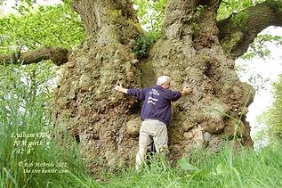 RobMcBride Treehunter.JPG