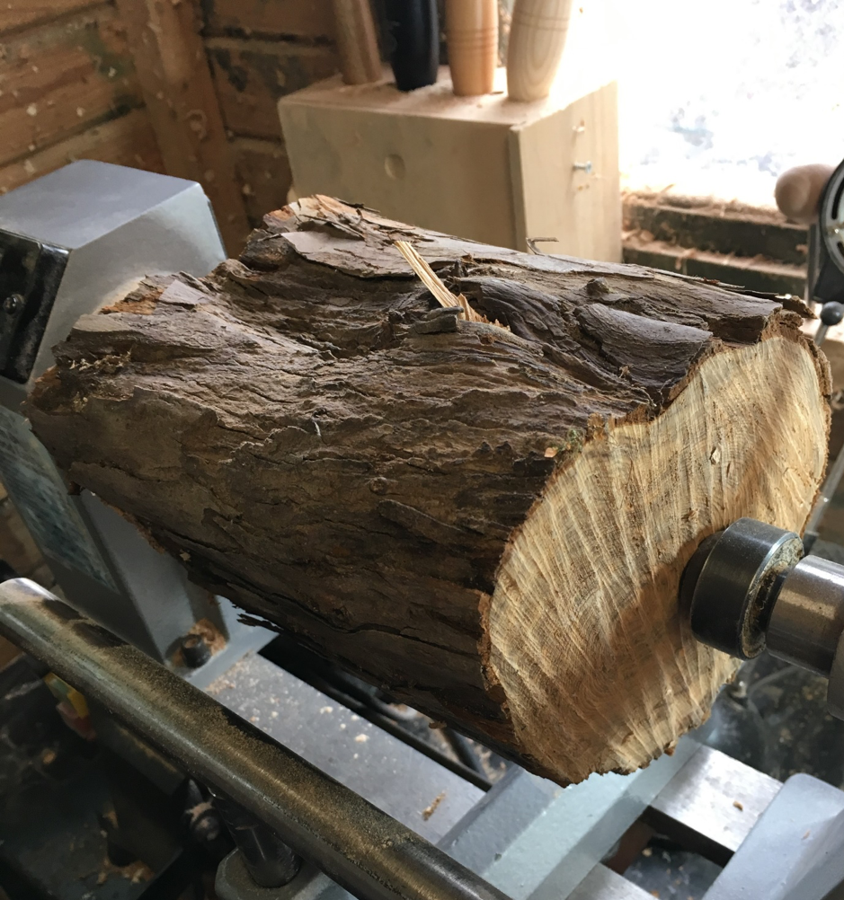 Yew wood on lathe