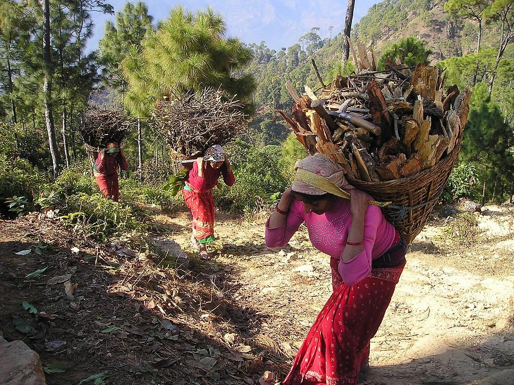 Women carrying wood in Nepal