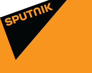 Odpovědi zaslané Sputniku na téma besedy na MU v Brně.