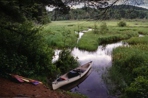 Algonquin, Ontario, 1999