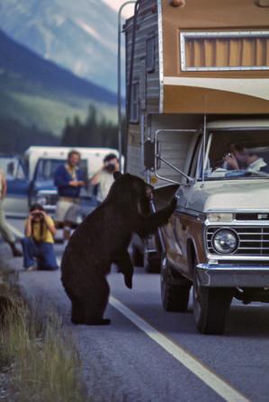 Jasper, Alberta, 1975