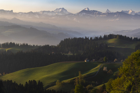 Moosegg, Berna, 2020