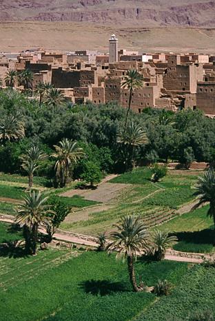 Valle del Todra, Marocco, 1990