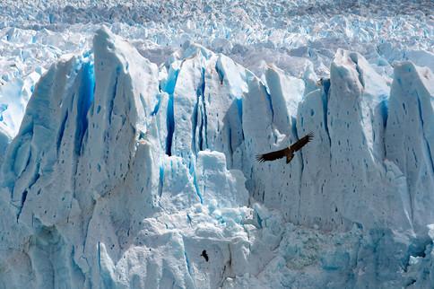 Ghiacciao Perito Moreno, Argentina, 2018