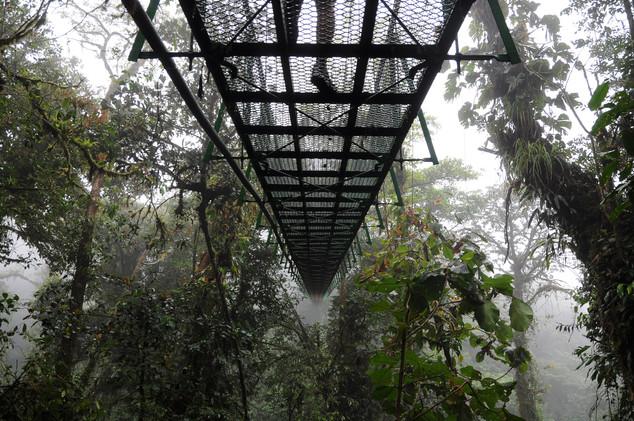 Monteverde, Costa Rica, 2017