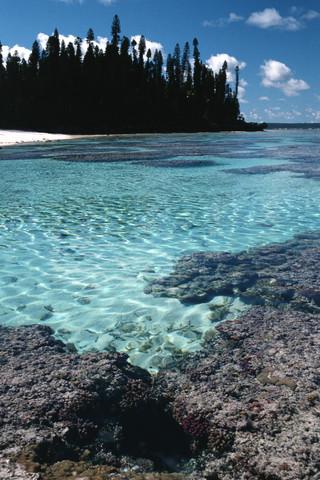 Marè, Nuova Caledonia, 2000
