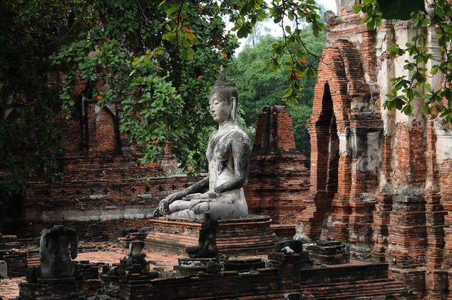 Wat Mahathat, Ayuthaya, Tailandia 2014
