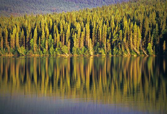 Indianpoint Lake, British Columbia, 2004
