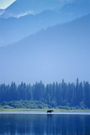 McLeary Lake, British Columbia, 2004
