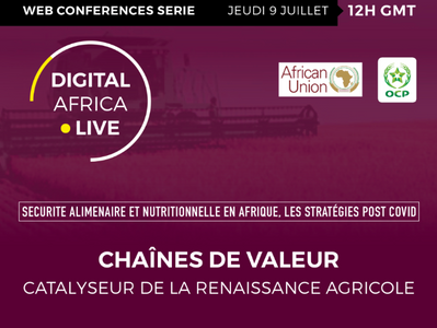 Chaines de valeur, catalyseur de la renaissance agricole en Afrique