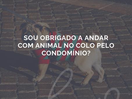 Sou obrigado a andar com animal no colo pelo condomínio?
