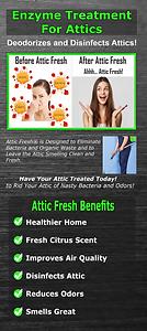 attic fresh trifold brochure. sell attic fresh attic deodorizer. wholesale only