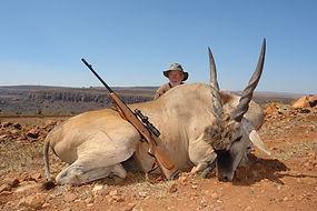 Eland Hunt