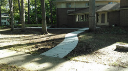 winding concrete path