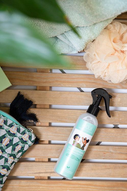 1 SPRAY soin quotidien pour cheveux secs