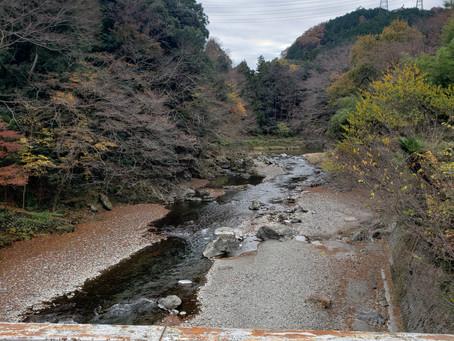 自然がいっぱい by H.YAMAMOTO