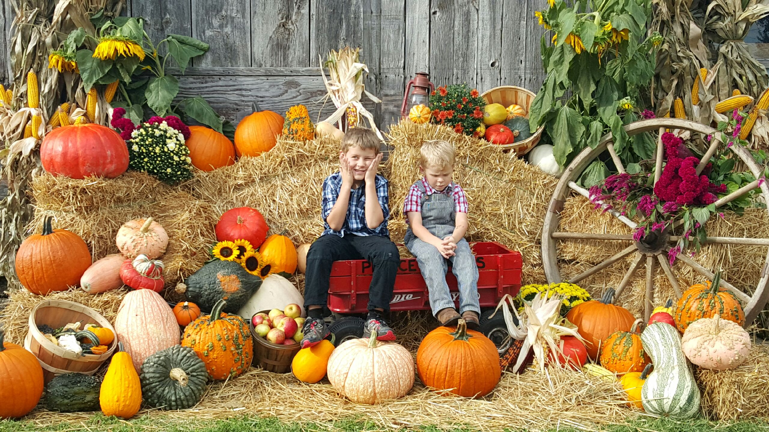 fall jake and jr