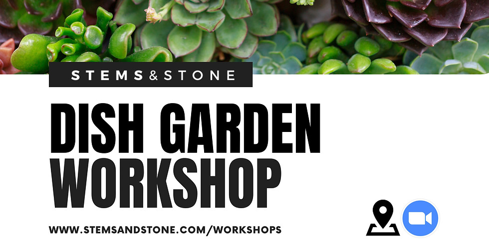 Succulent Dish Garden Workshop (12pm)