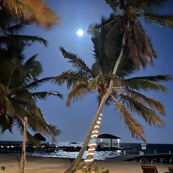 Moon at Lighthouse Beach