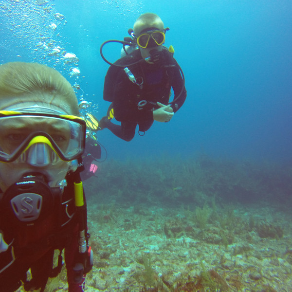 Scuba Diving the Reef