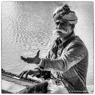 Musician in Jasialmer, Rajasthan