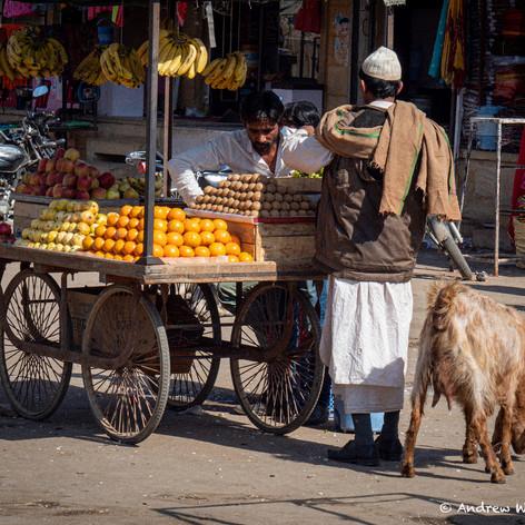 Banana Seller Jaisalmer