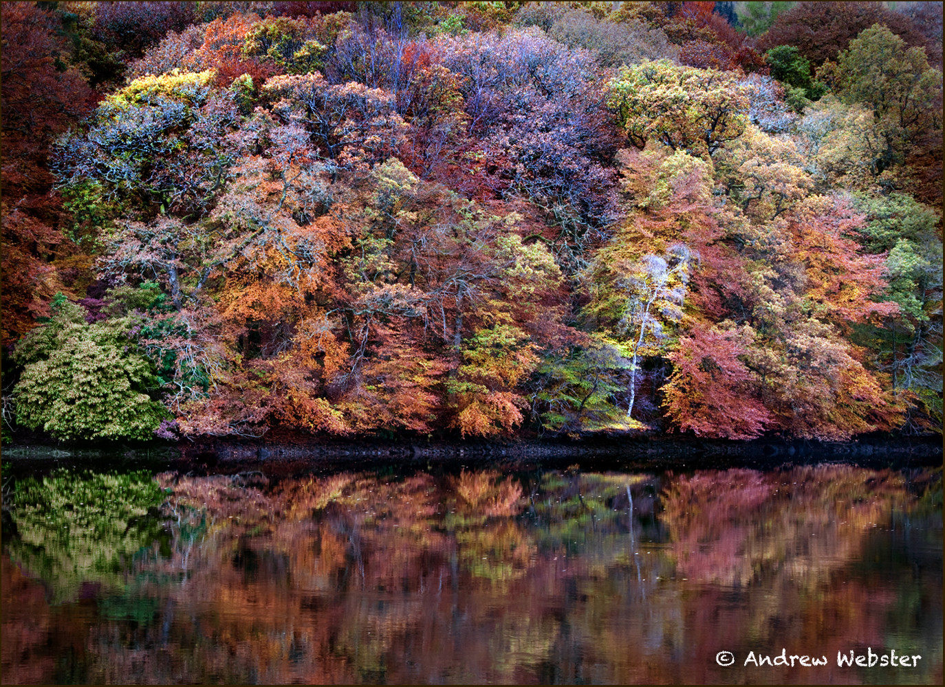 Loch Faskally Fall