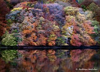 Loch Faskally, Perthshire