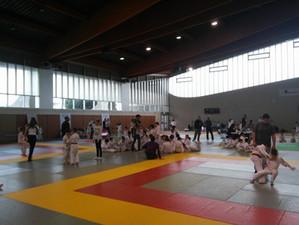 Tournoi section sportive judo