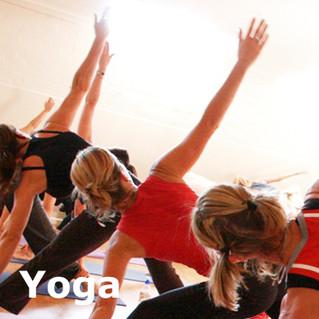 Stage de YOGA pour le dos