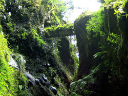 Biosphere Reserve La Palma