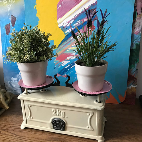 Kitchen scales up-cycled into flower pots
