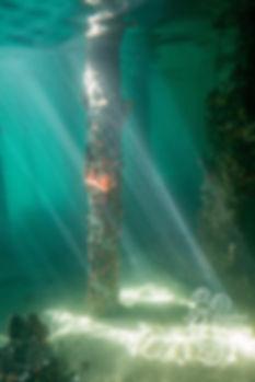 WaterGoddessRaysWMsm.jpg