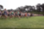West Valley Track Club Cross Country