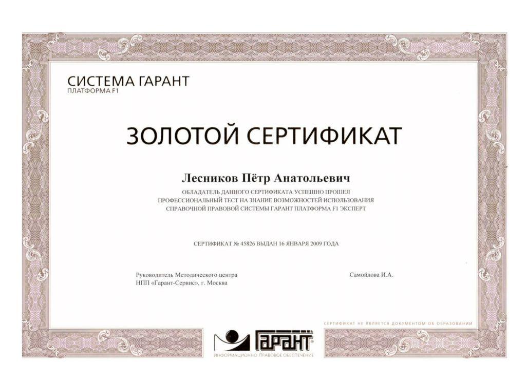 Сертификат золотой гарант 2009