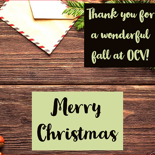 Merry Christmas Thank You Letter