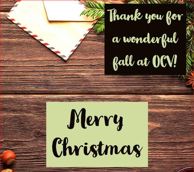 Merry Christmas: Thank you letter