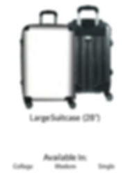 28 inch suitcase.jpg
