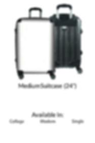 24 inch suitcase.jpg