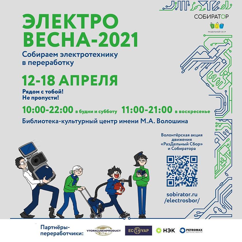 Электровесна-2021