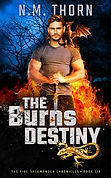 the Burns Destiny | Urban Fantasy