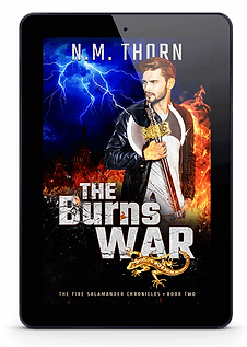 The Burns War | Urban Fantasy Novel