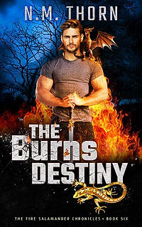 The Burns Destiny | N.M. Thorn | Urban Fantasy Author