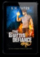 The Burns Defiance | Urban Fanatasy Novel