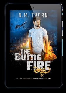 N.M. Thorn, urban fantasy author
