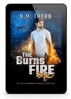 The Burns Fire | N.M. Thorn