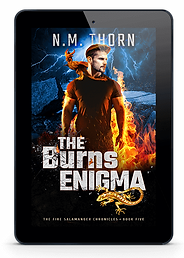 the-burns-enigma-ipad.png