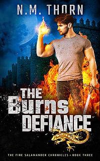 The Burns Defiance | N.M. Thorn | Urban Fantasy Book